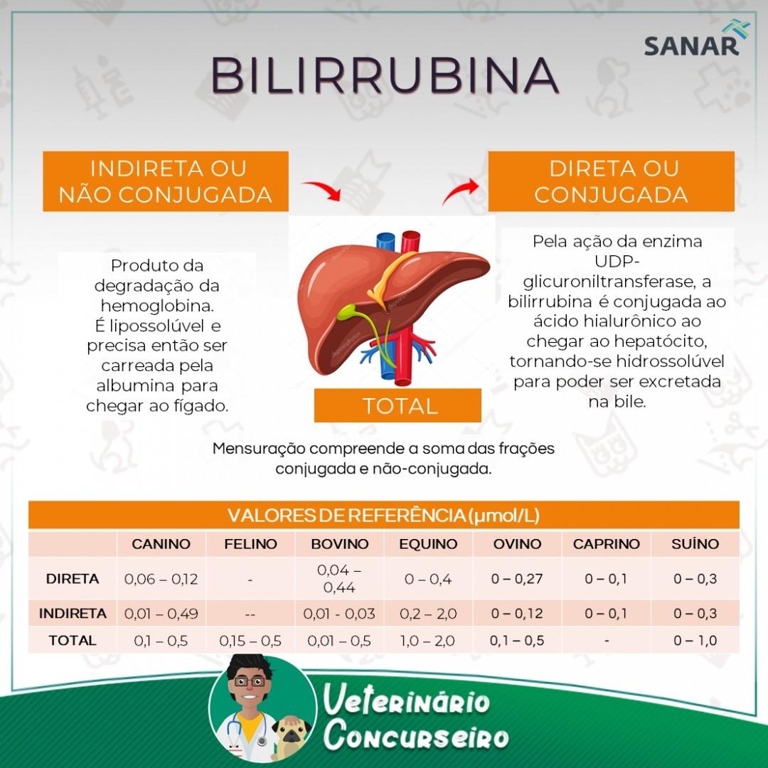 Resumo de Bilirrubina em Medicina Veterinária