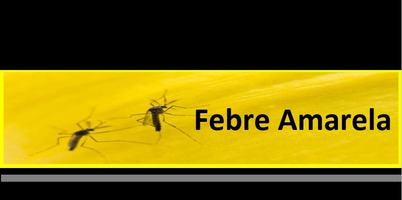 O que você precisa saber sobre Febre Amarela