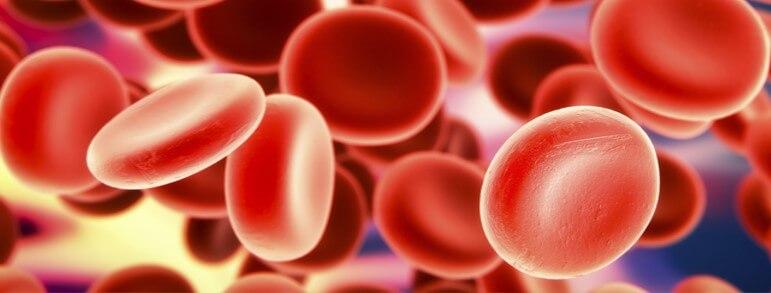 Serie Casos Clínicos - Anemia Megaloblástica