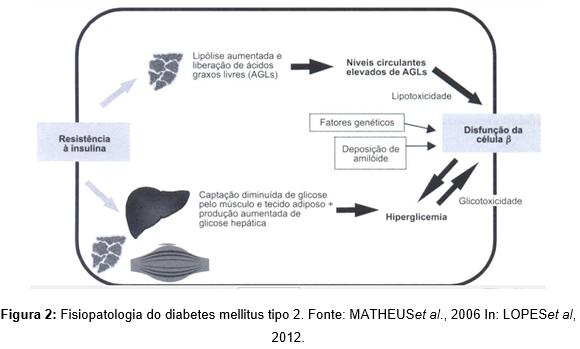 la fisiopatología de la diabetes mellitus tipo 1 implica significado