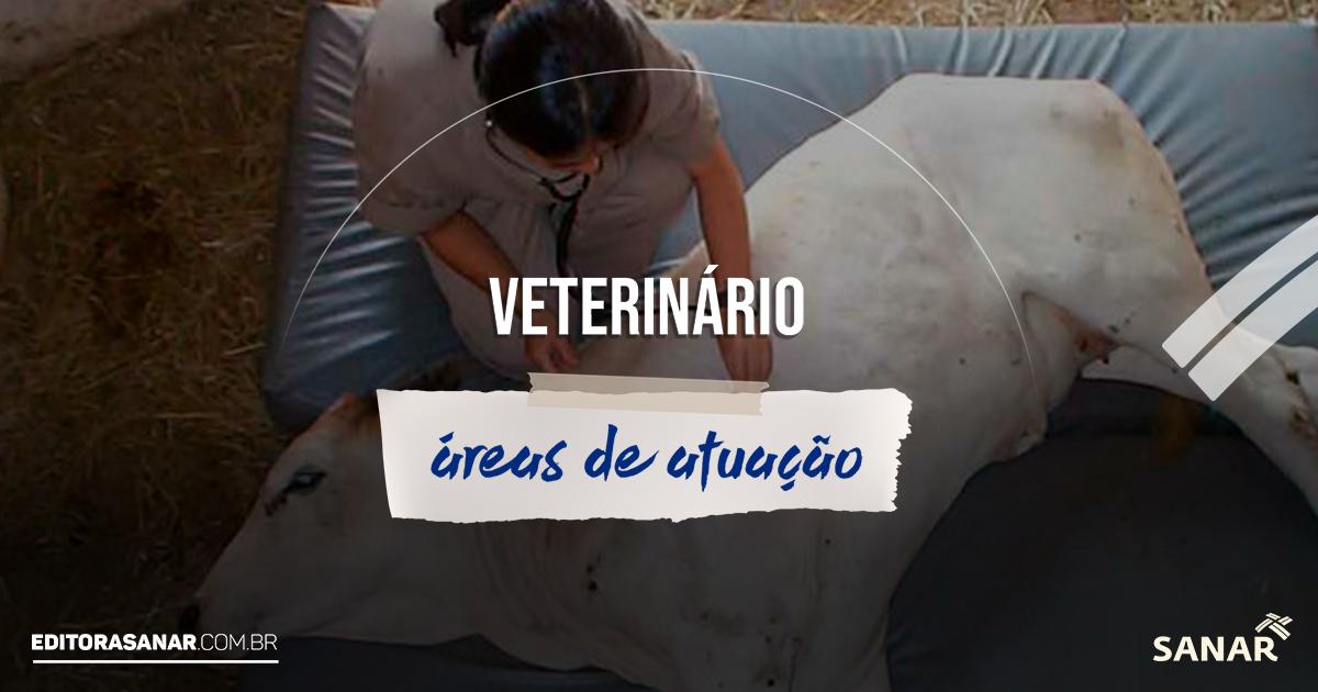 O profissional de Medicina Veterinária no Brasil