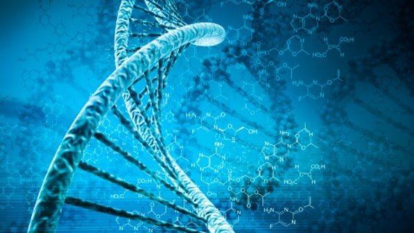 Terapia genética melhora função motora de pacientes com Parkinson