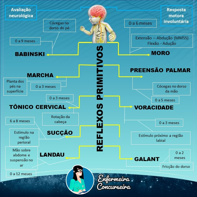 Mapa Mental de Reflexos Primitivos | Enfermagem
