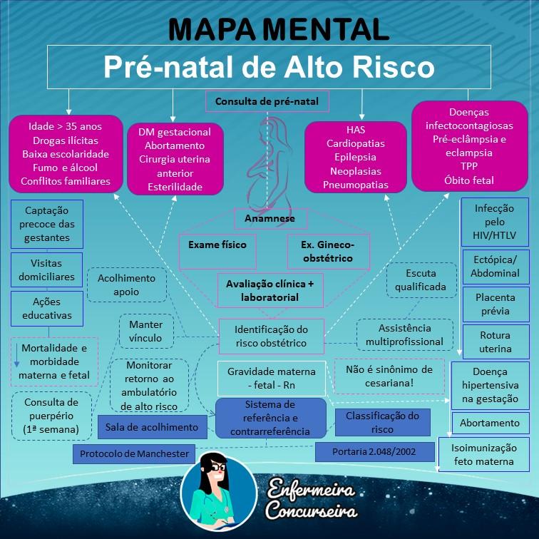 Mapa Mental de Pré Natal de Alto Risco | Enfermagem