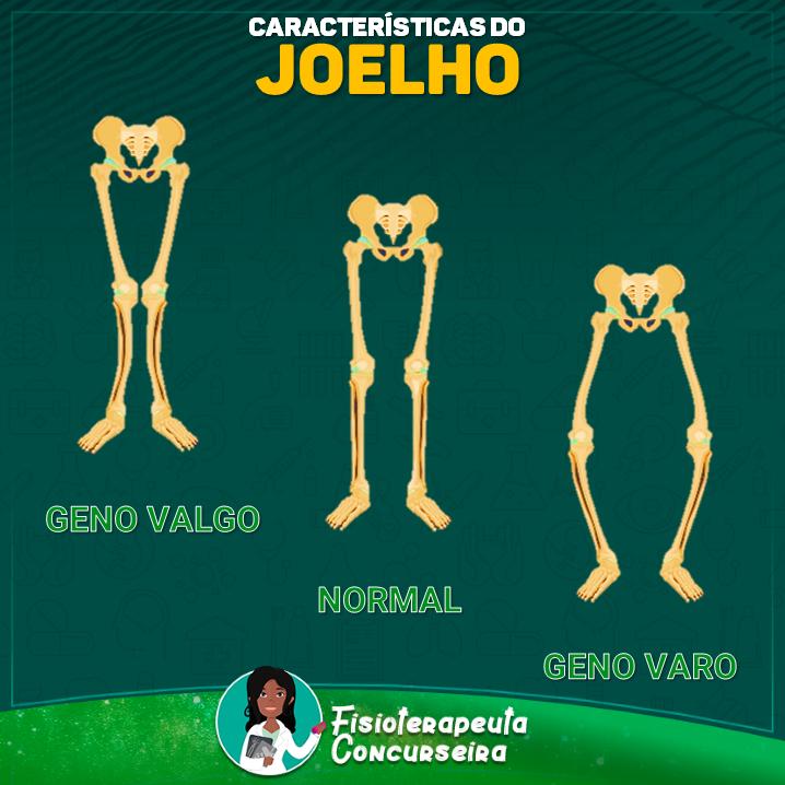 Resumo de Características do Joelho | Fisioterapia