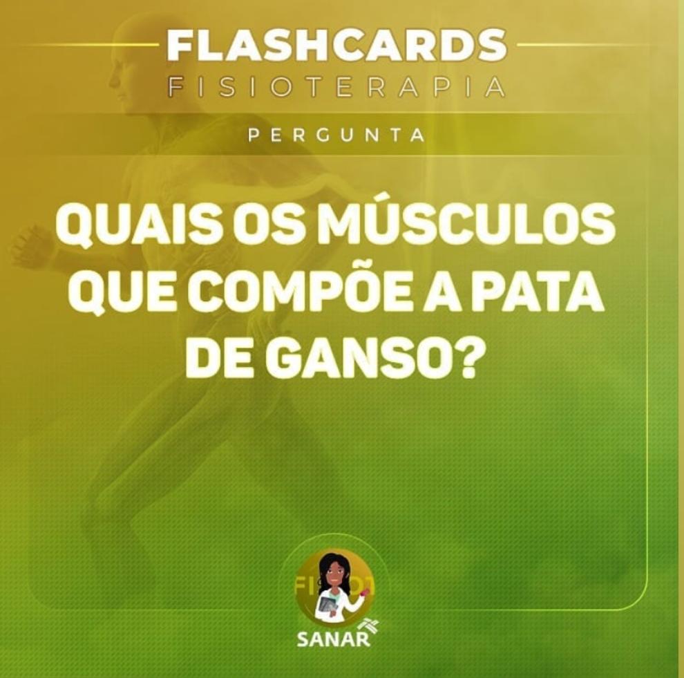 Flashcard sobre Pata de Ganso | Fisioterapia