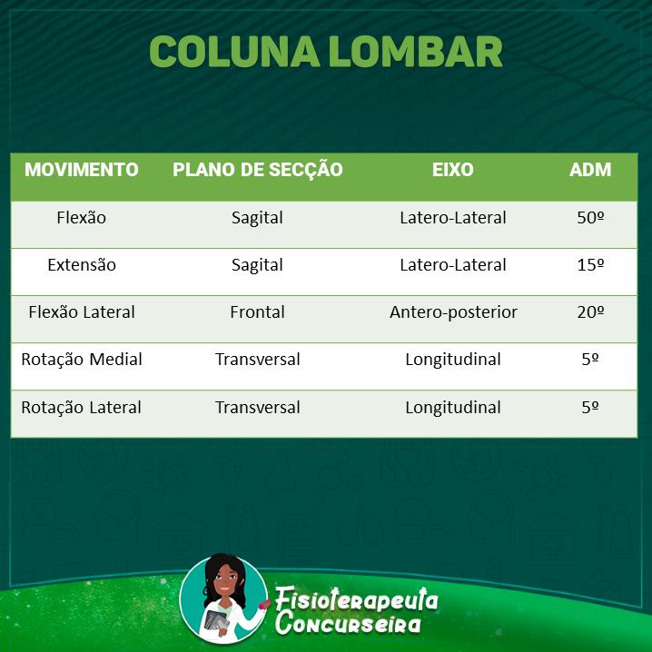 Resumo de Coluna Lombar | Fisioterapia