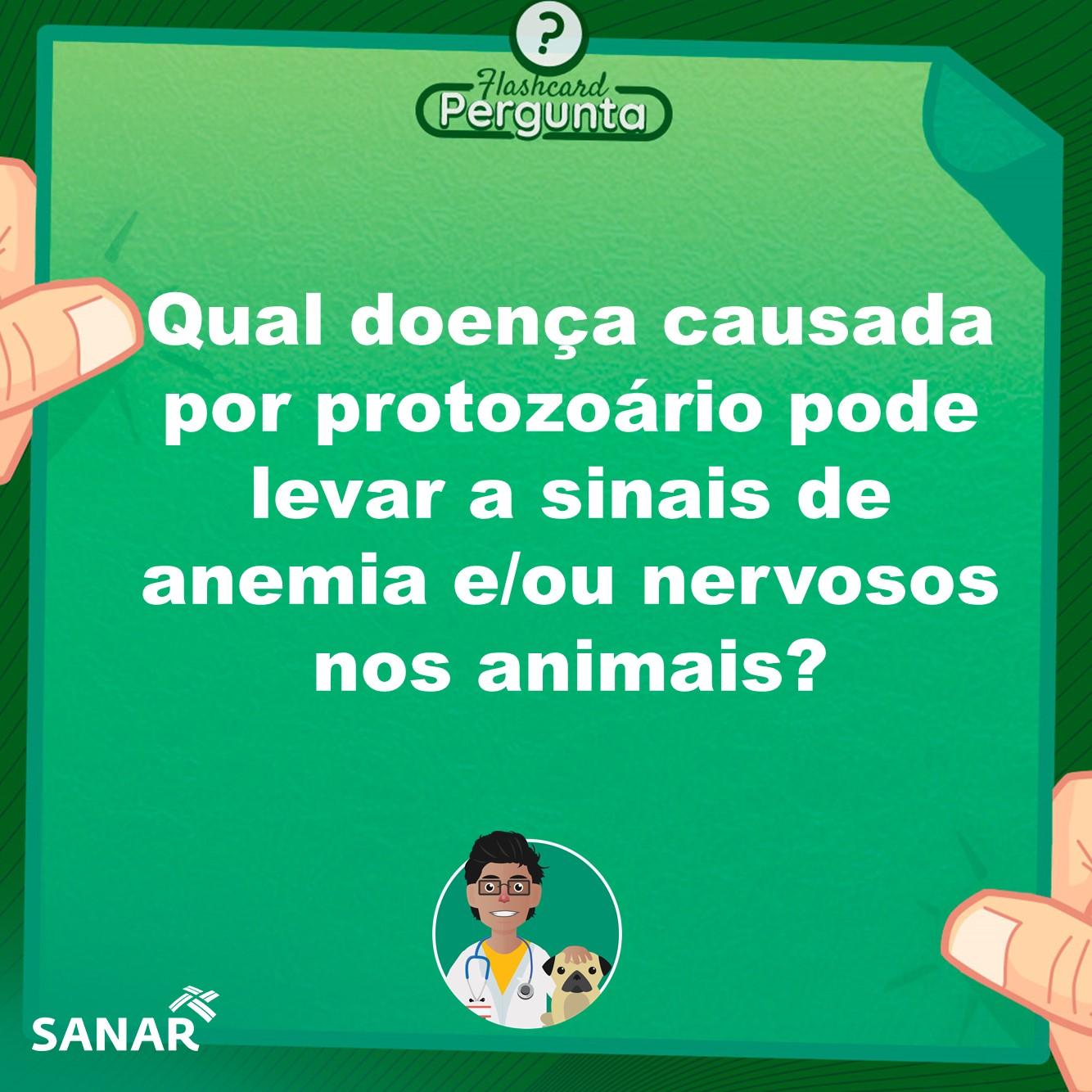 Flashcard de Patologia por Protozoário| Medicina Veterinária