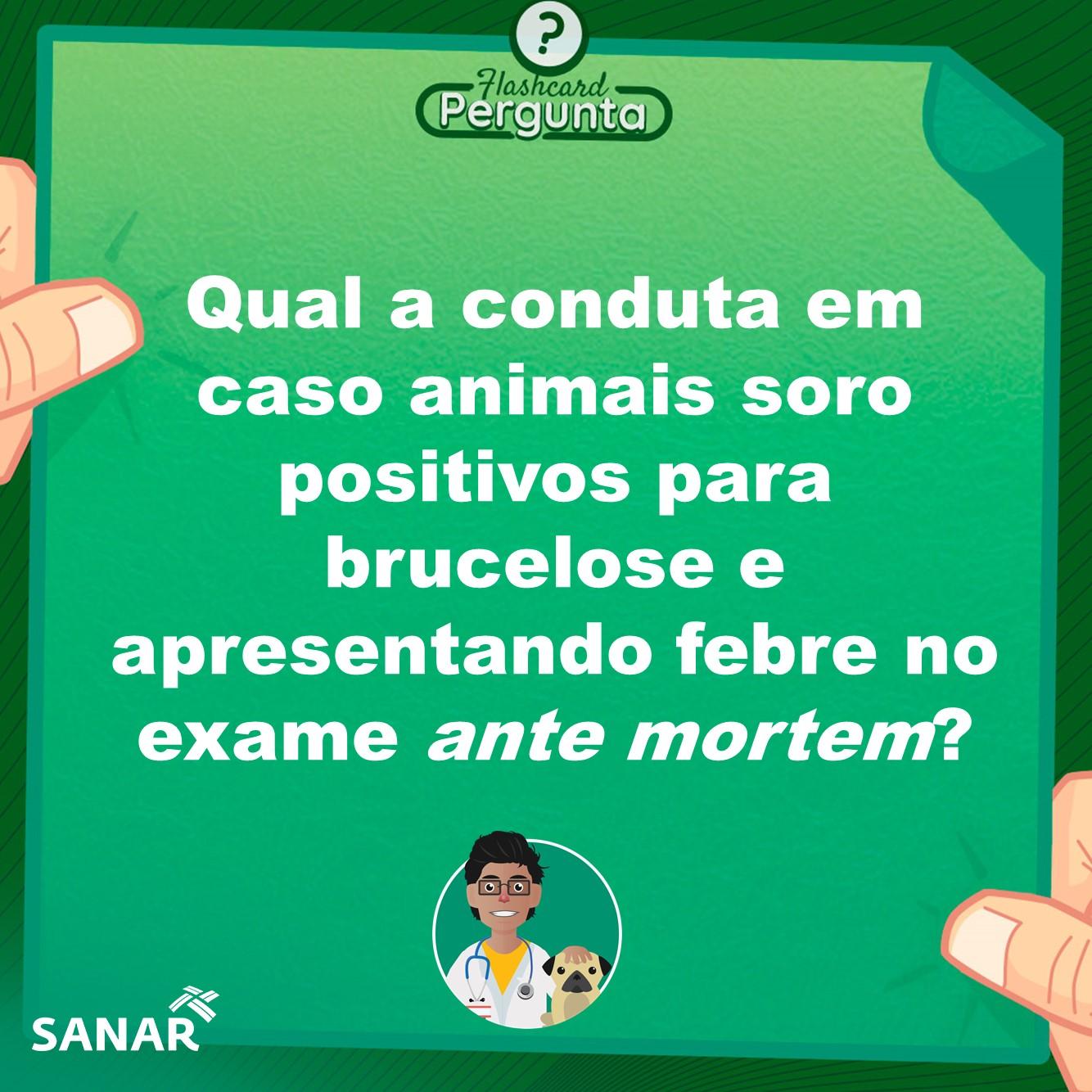 Flashcard sobre Brucelose Bovina| Medicina Veterinária