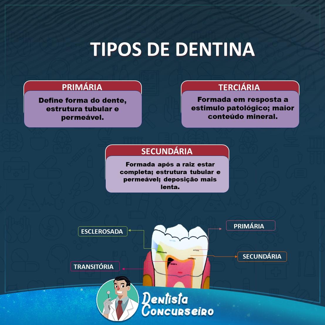 Resumo dos Tipos de Dentina | Odontologia