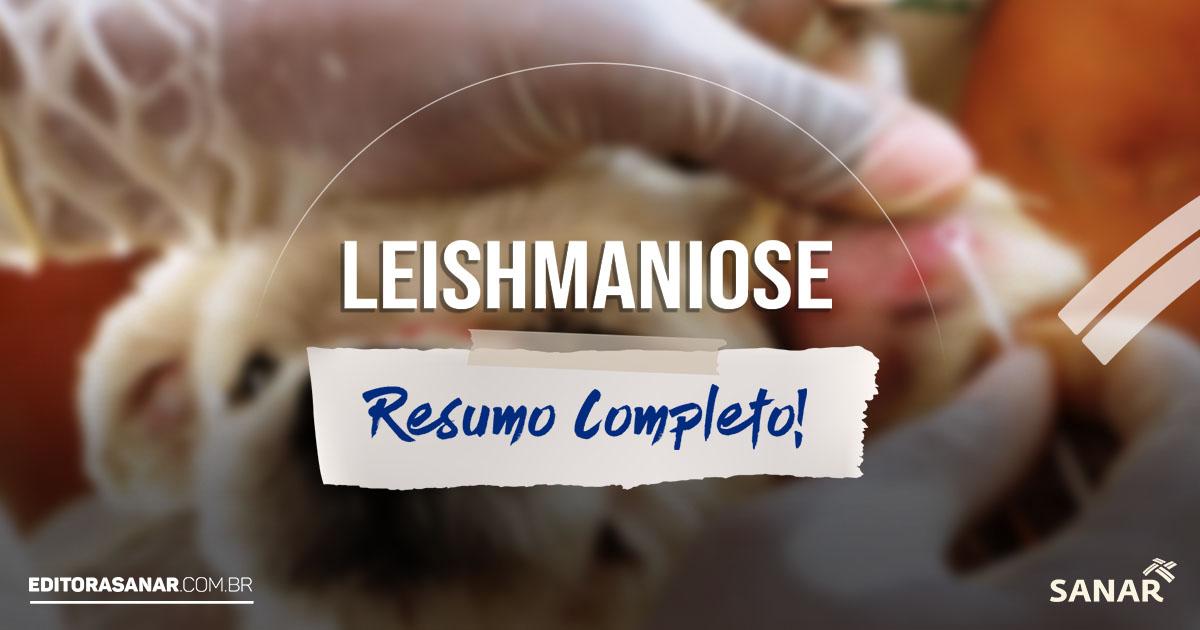 Leishmaniose - Resumo Completo: tudo que o veterinário precisa saber!