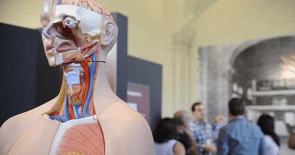 MEC apura fraude em curso de Medicina na Bahia