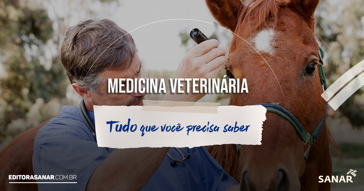 Medicina Veterinária: curso, mercado de trabalho, salário e mais!