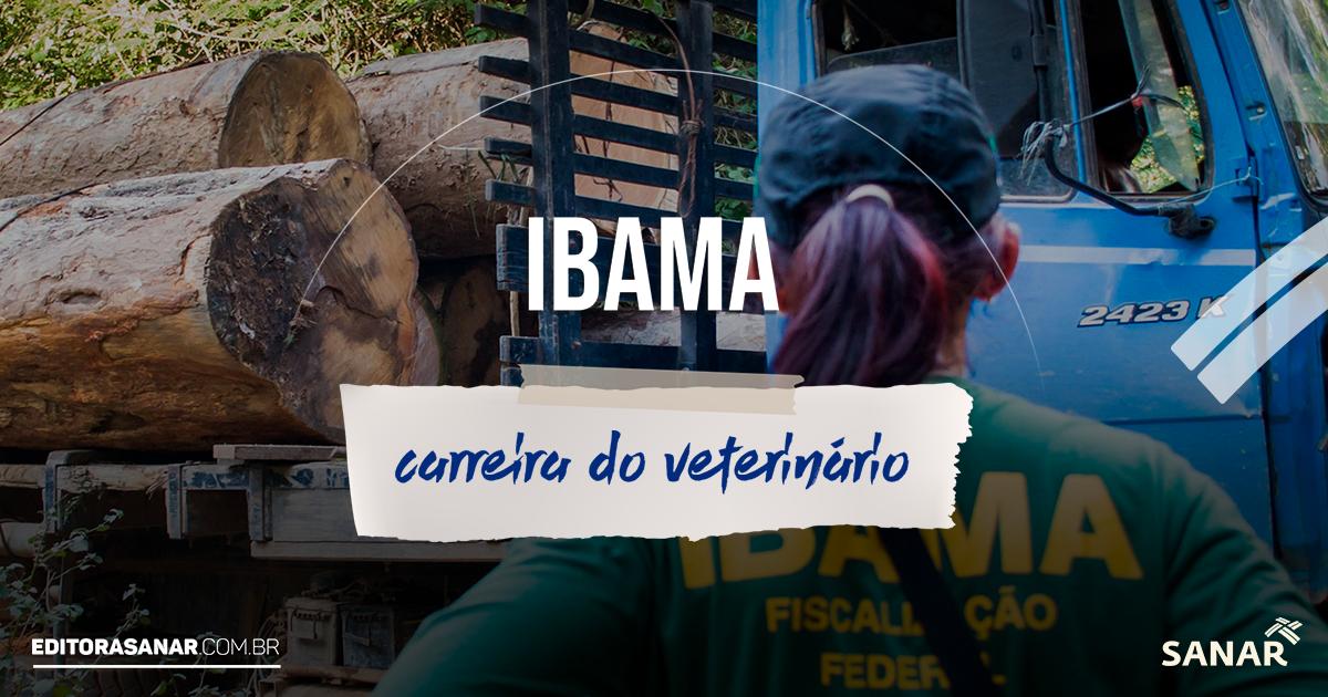 Veterinário no Ibama: fique por dentro da carreira