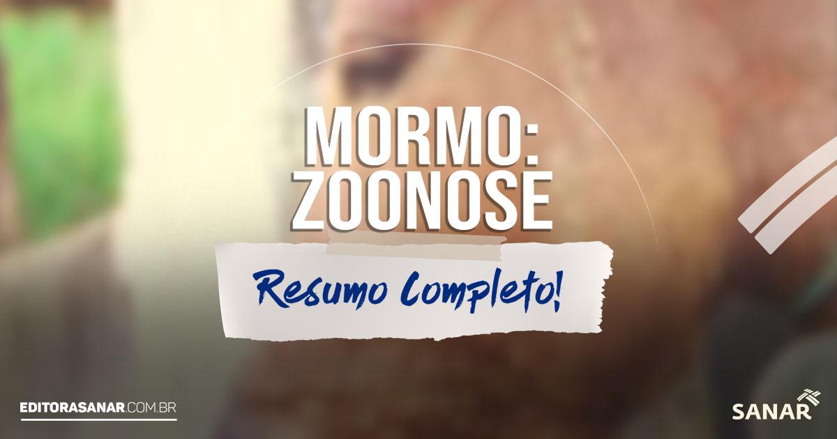 Mormo em Equinos: o que é, etiologia, transmissão, diagnóstico e mais!