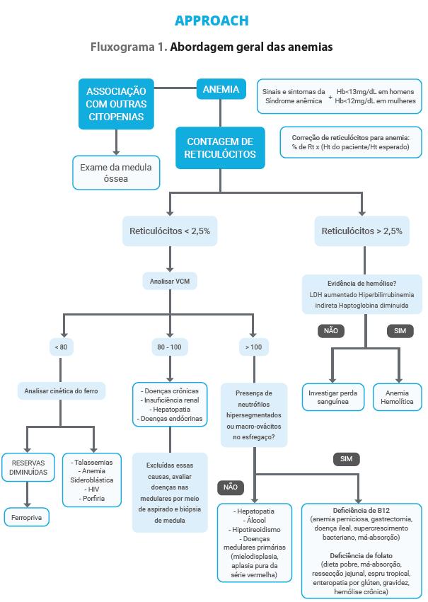Approach - Grandes Síndromes.png (70 KB)