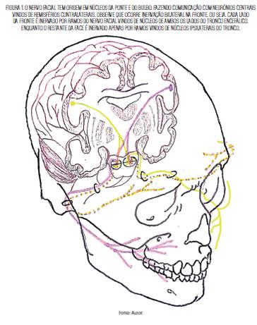 Raciocinio Neurológico - Imagem 1.png (162 KB)