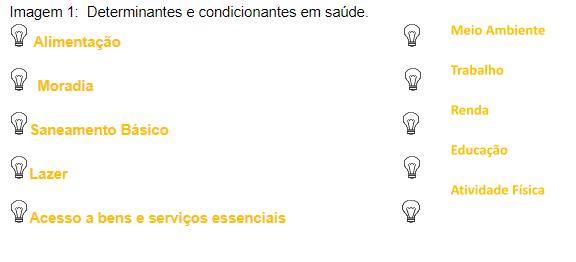 Determinantes e condicionantes em saúde.png (13 KB)