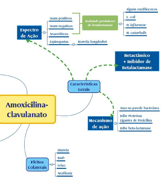 Mapa Mental - Antiobioótico.png (152 KB)