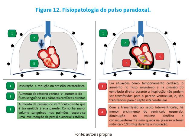 Semiologia - foto 1.png (275 KB)