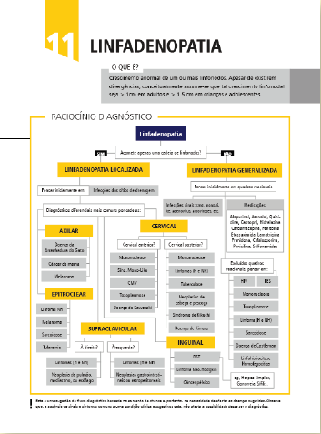 YB diagnósticos - imagem 1.png (54 KB)