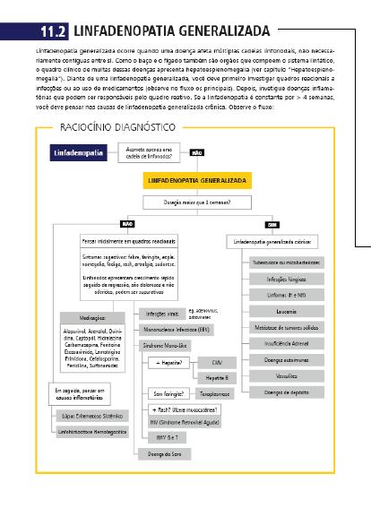 YB diagnósticos - imagem 2.png (59 KB)