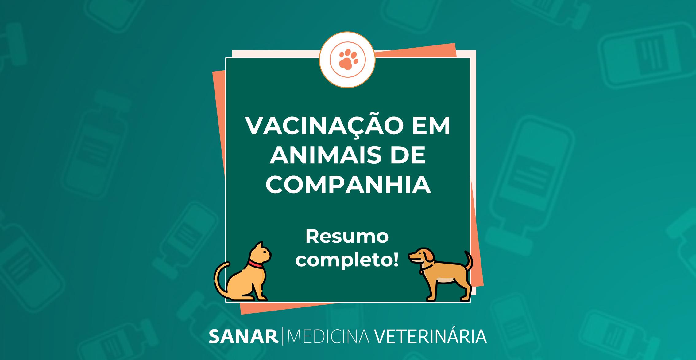 Saiba tudo sobre vacinação em animais de companhia