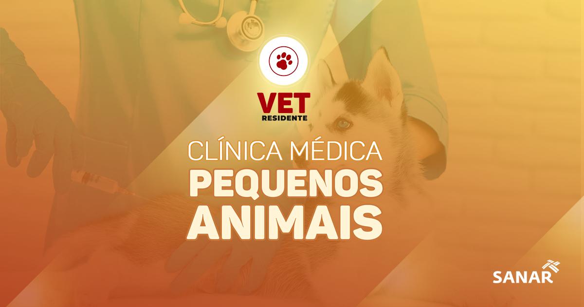 Residência em Veterinária: As doenças que mais atingem pequenos animais